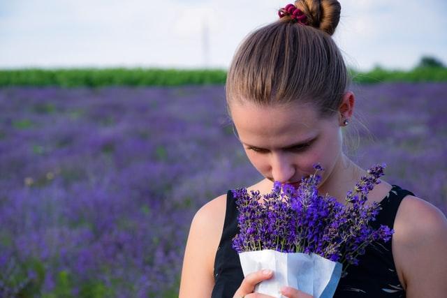 La lavande est idéale pour retrouver un linge au parfum frais et fleuri